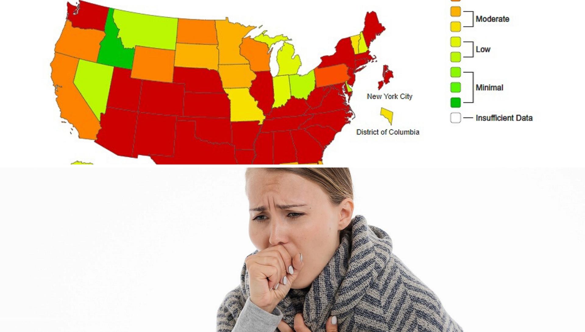 アメリカ インフルエンザ 死者